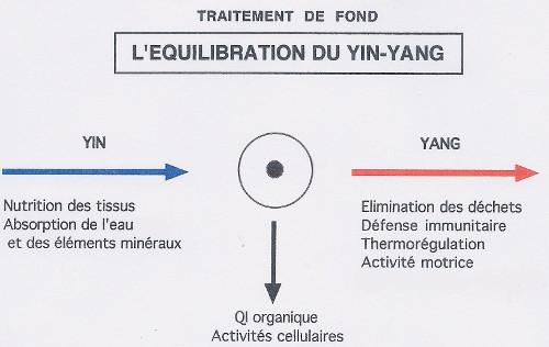 Equilibrer yin et yang